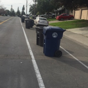 bike-lane-trash-cans