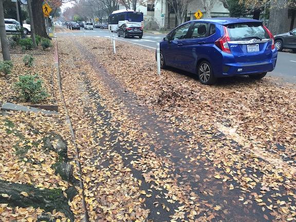 P Street separated bikeway leaf slime